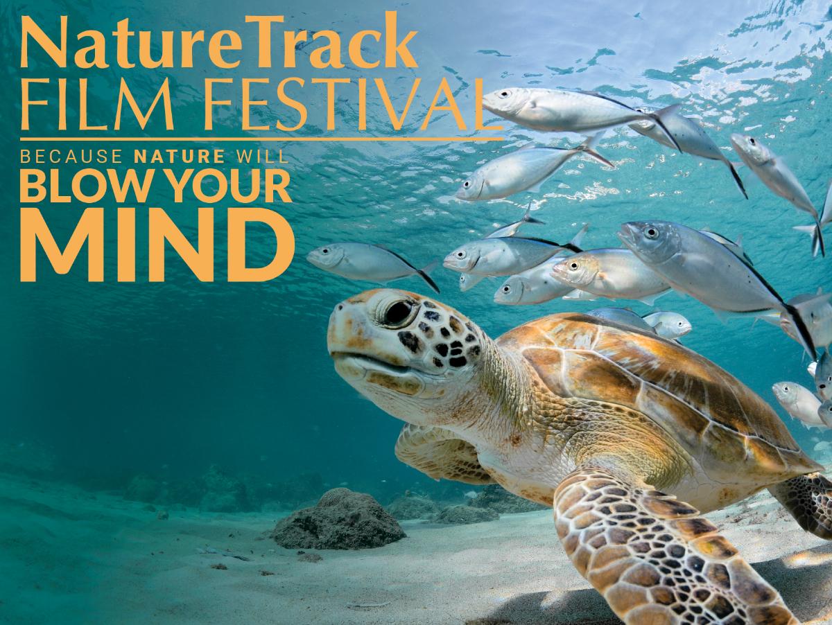 NatureTrack Film Festival 2021