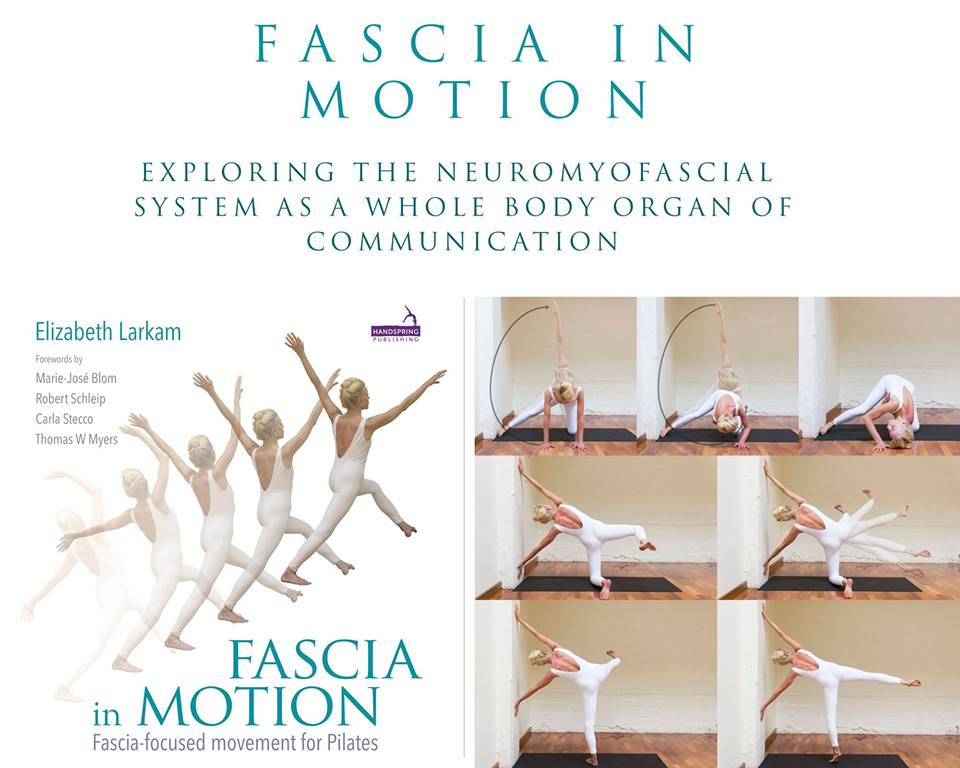 Fascia in Motion - Exploring the NeuroMyofascial System title=