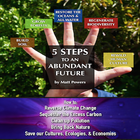 The 5 Steps to an Abundant Future  with Matt Powers Author of The Permaculture Student 2  title=