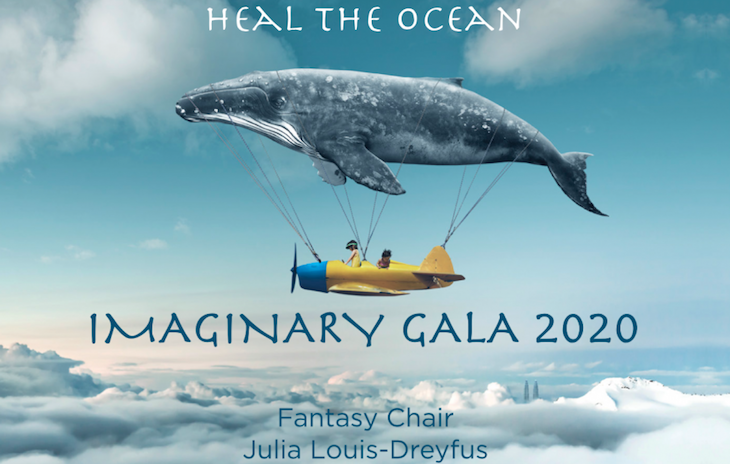 Heal the Ocean Imaginary Gala 2020 title=