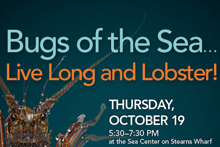 Bugs of the Sea…Live Long and Lobster! title=