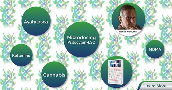 How Microdosing, MDMA, Psilocybin, Ayahuasca and Ketamine promote creativity, healing and spiritual development. title=