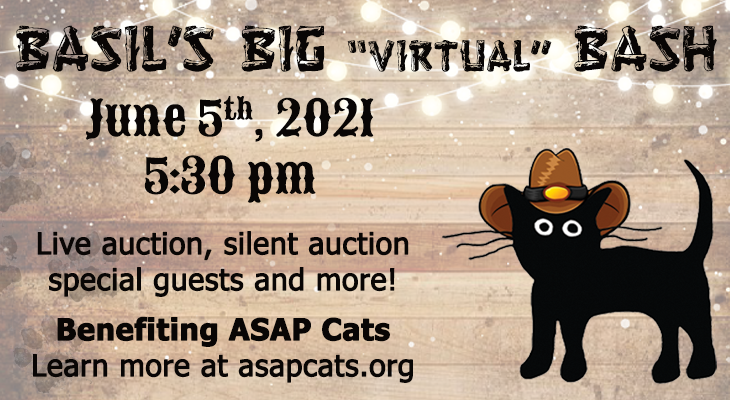 ASAP Cats: Basil's Big Virtual Bash title=