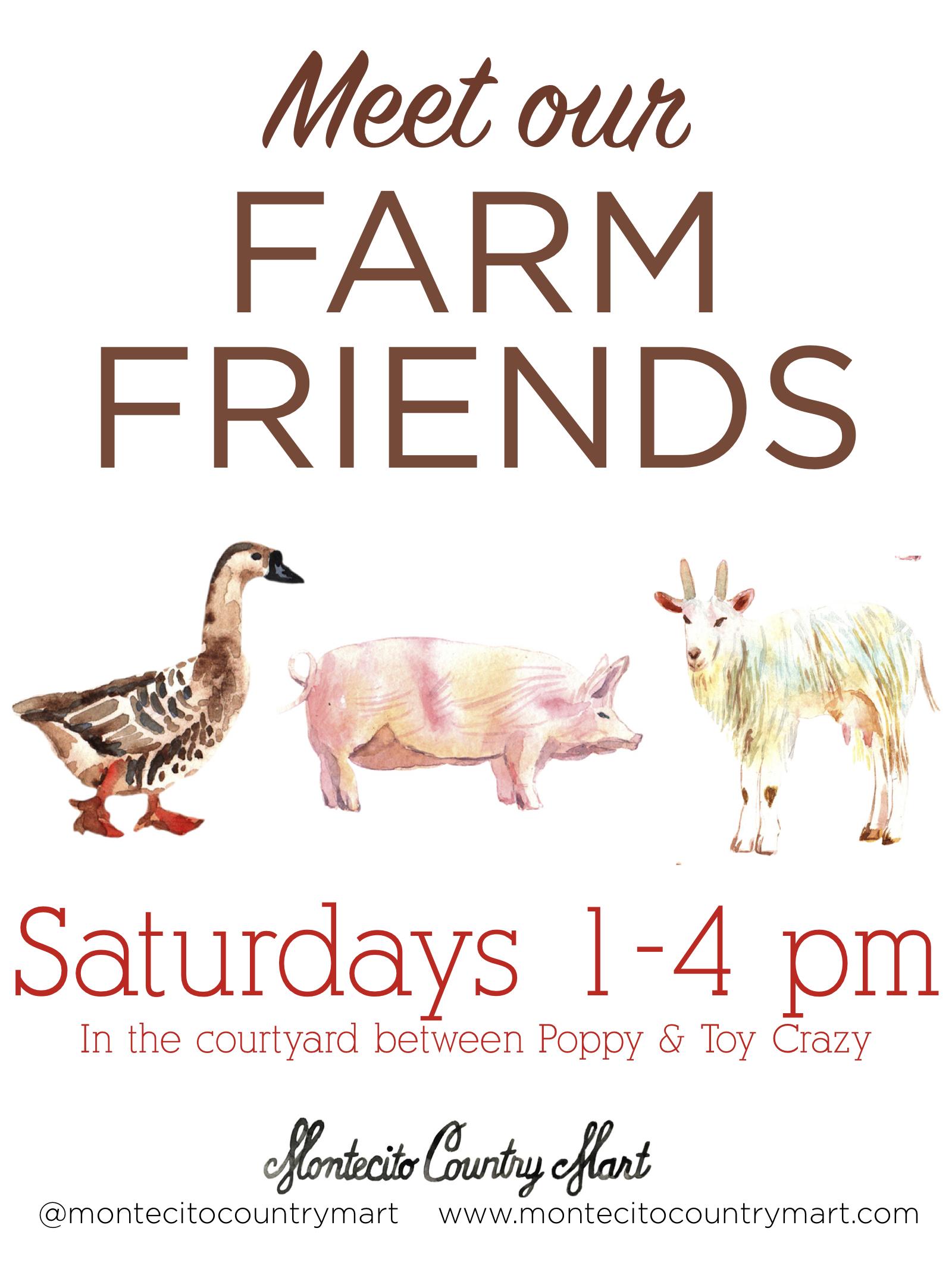Meet our Farm Friends