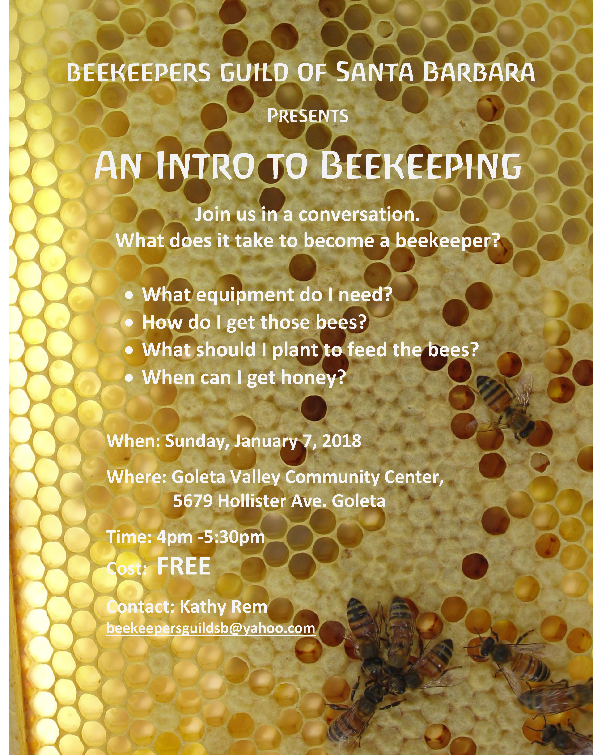 An Intro to Beekeeping