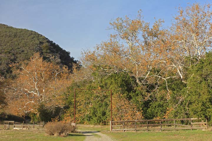 "Visit the ""Jewel of the Gaviota Coast"": Arroyo Hondo Preserve title="