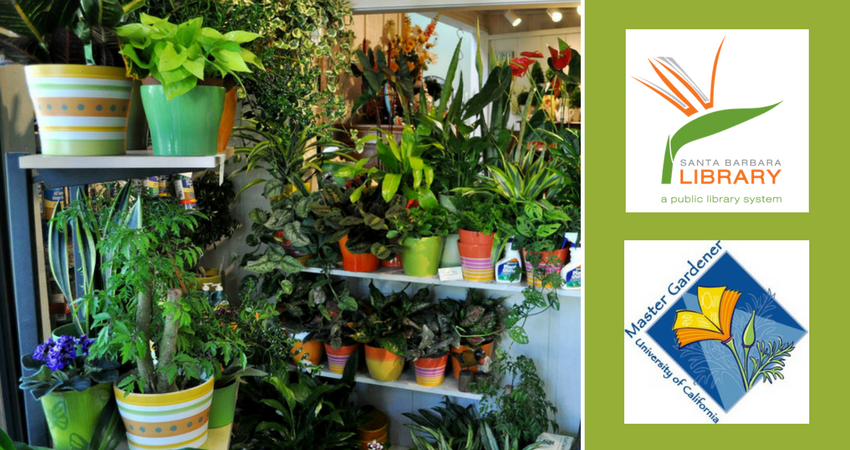 Master Gardeners Workshop: Houseplant Jungle
