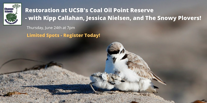 Restoration and Conservation at UC Santa Barbara's Coal Oil Point Reserve title=