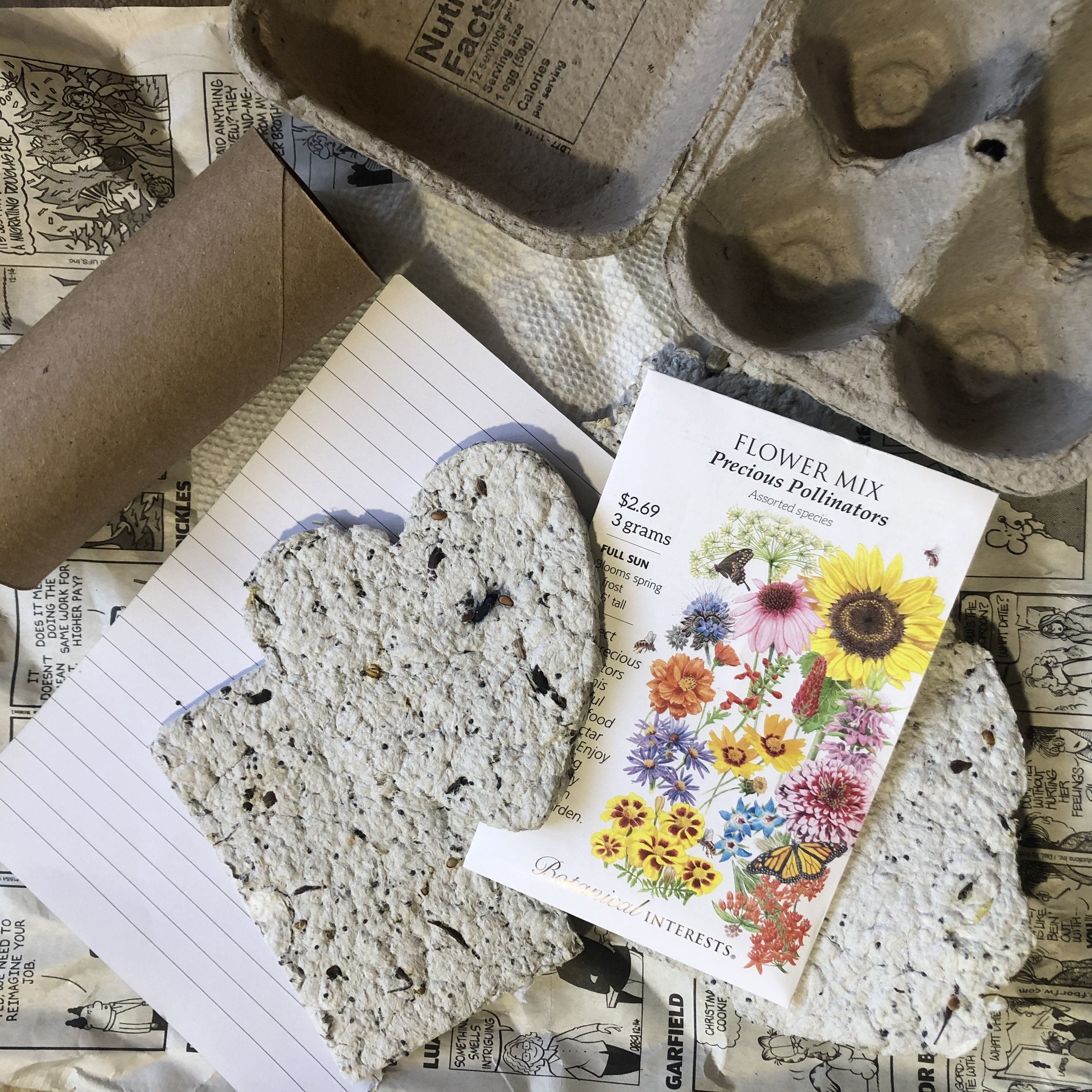 Family Friendly Workshop | Seed Paper Tutorial