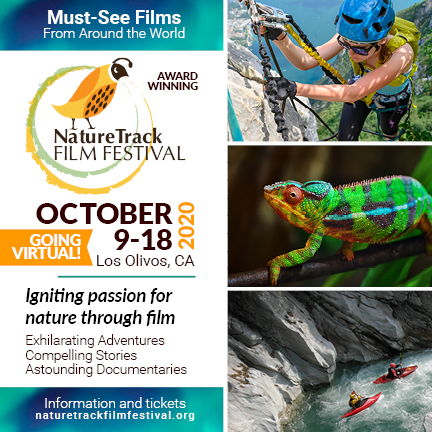 Entries from 21 countries are in the all Virtual NatureTrack FF title=