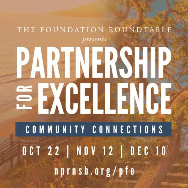 Partnership for Excellence: Community Connections – Exploring Diversity, Equity, and Inclusion for Nonprofits title=