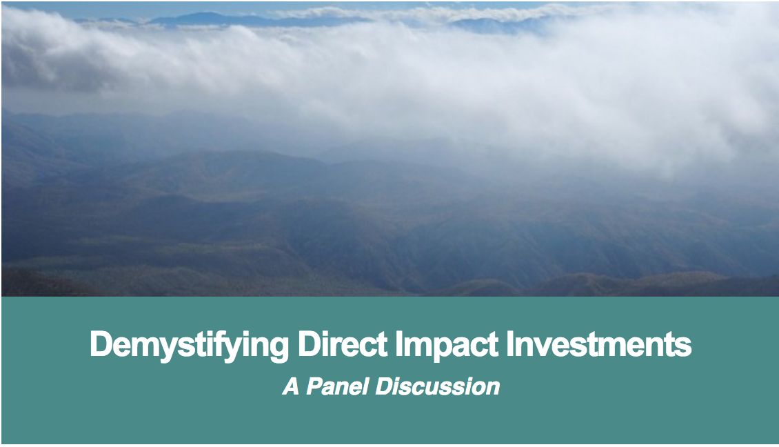 SCA Demystifying Direct Impact Investments
