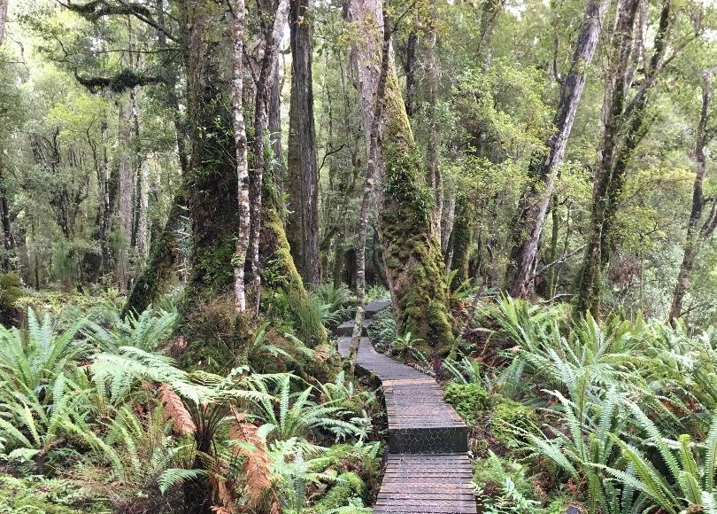 Hiking New Zealand Tuatapere Hump Ridge Track Fiordland National Park Santa Barbara Public Library title=