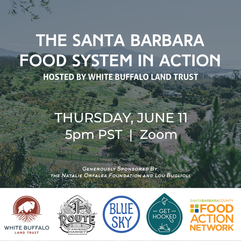 The Santa Barbara Food System in Action: Transitioning from crisis to forward-thinking strategy title=