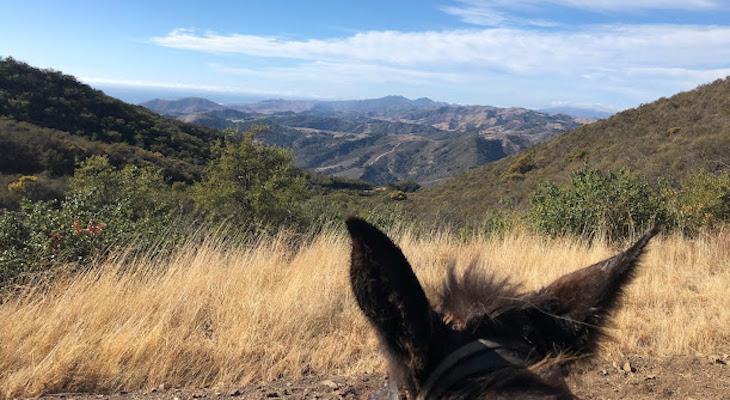 Mule Trail Ride: Gaviota Peak