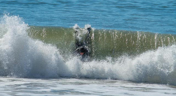 Surf at Solimar and Leadbetter