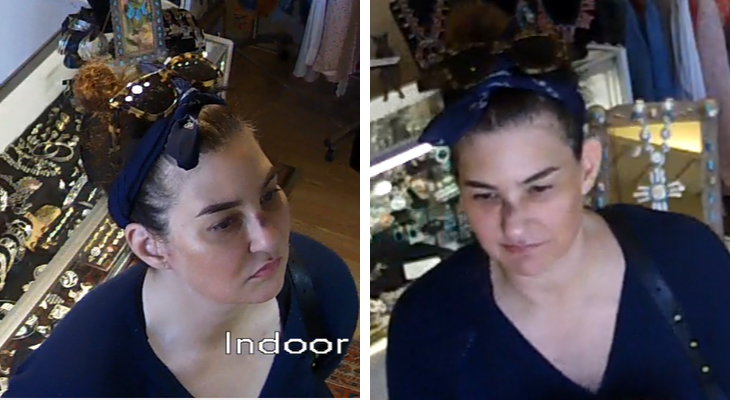 Suspected Retail Thief Identified