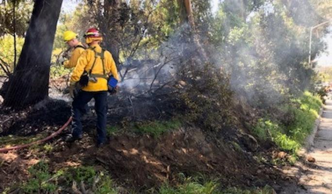 Vegetation Fire Along Highway 101