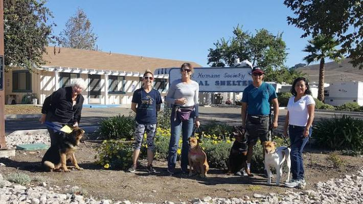DAWG and Santa Ynez Humane Society Merge title=