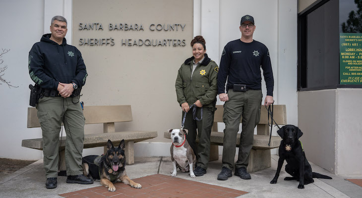 Sheriff's Office Celebrates K9s Milestones