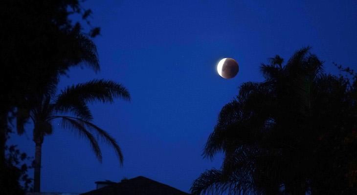Lunar Eclipse Photos title=