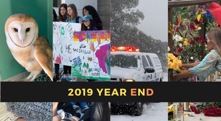 Edhat's 2019 Year in Review title=
