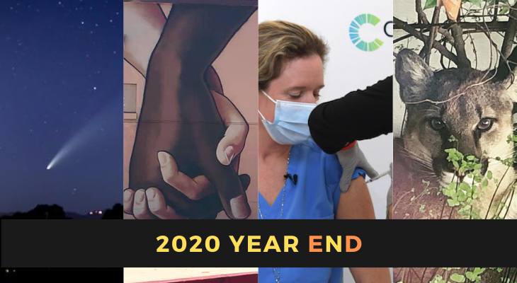 Edhat's 2020 Year in Review