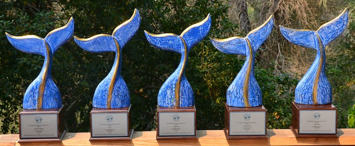 Shipping companies receive awards for slowing to protect blue whales, blue skies