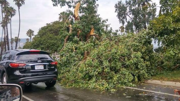 Microburst Storm Causes Damage to Waterfront