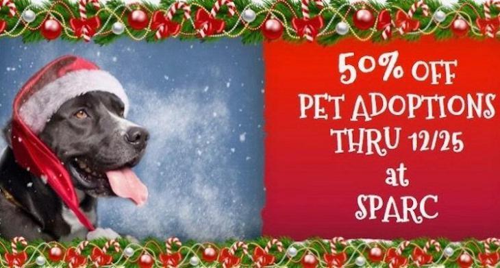 Non-Profit of the Week: Santa Paula Animal Rescue Center