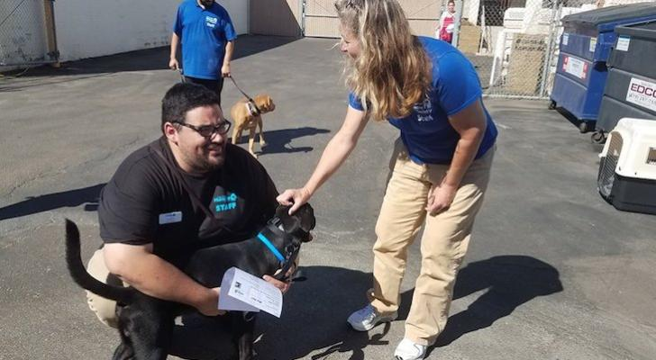 Humane Society Welcomes 15 Dogs From Areas Affected By Hurricane Michael title=