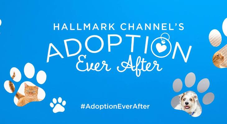 Hallmark Channel Invites Santa Barbara Humane Society to Showcase Animals