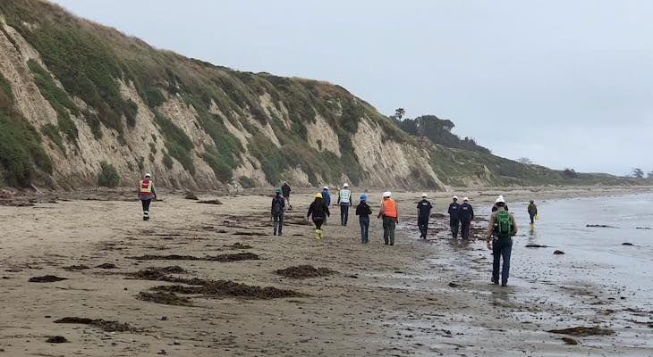 Investigation Continues in Haskells Beach Oil Spill