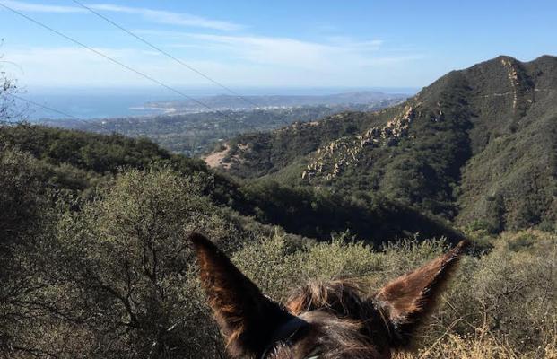 Edison Catway View title=