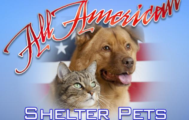 Fees Waived for Shelter Pets Through July 20 title=