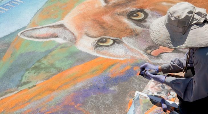 I Madonnari Italian Street Painting Festival Available Online title=