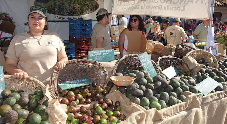 Carpinteria Avocado Festival Doesn't Disappoint title=