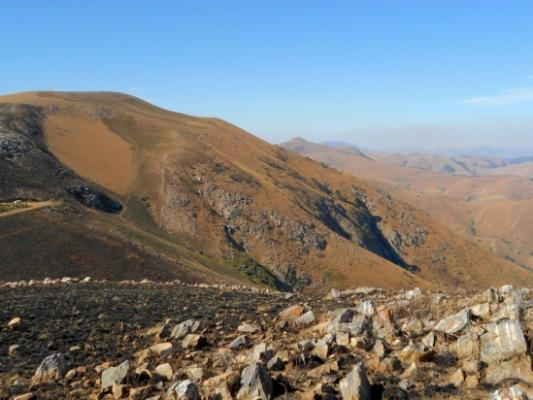 UCSB researchers discover minerals in South Africa from early Earth title=