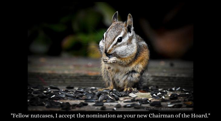 Chipmunk Caption Contest Winner Announced