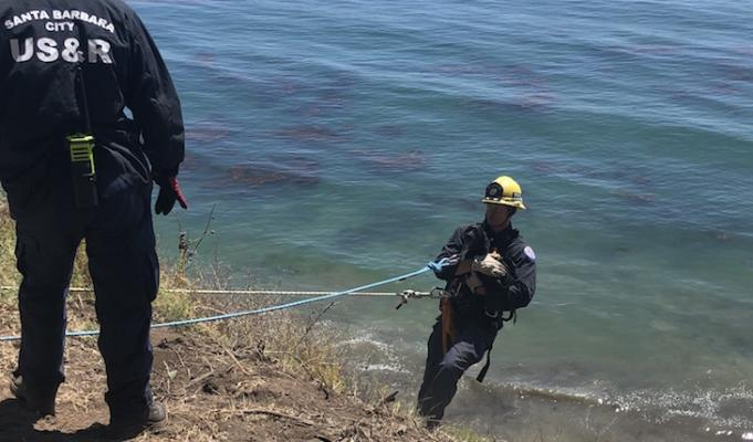 Firefighters Rescue Dog from Douglas Preserve Cliffs title=
