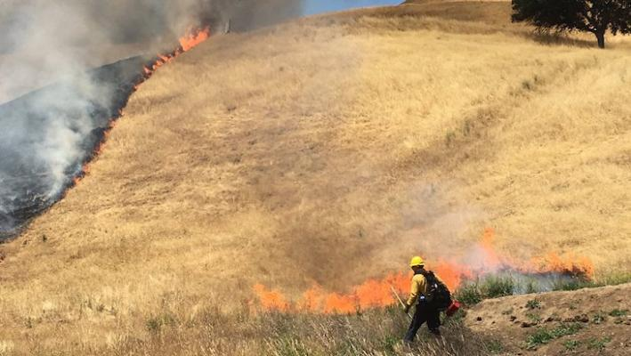 Local Firefighters Tackle Prescribed Burns at Camp Roberts