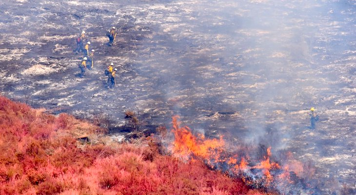Cruces and Windmill Fire Causes Determined title=