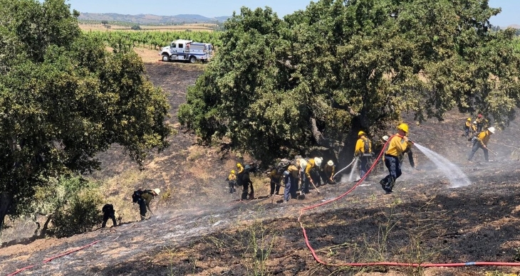 Fire Crews Respond to Brush Fire in Santa Ynez title=