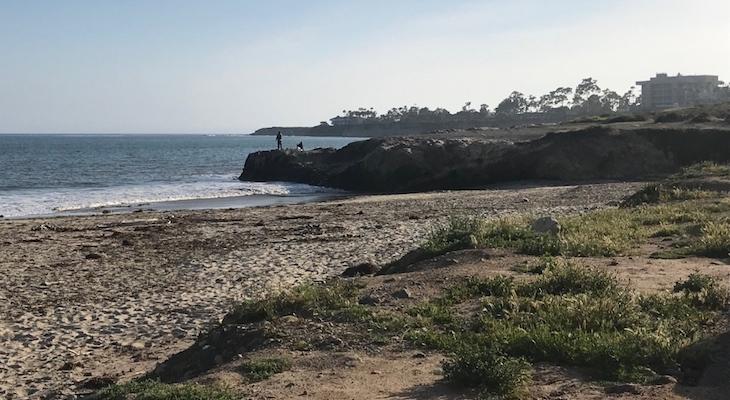 Scientists Detect Human Waste in Mudslide Debris at Goleta Beach