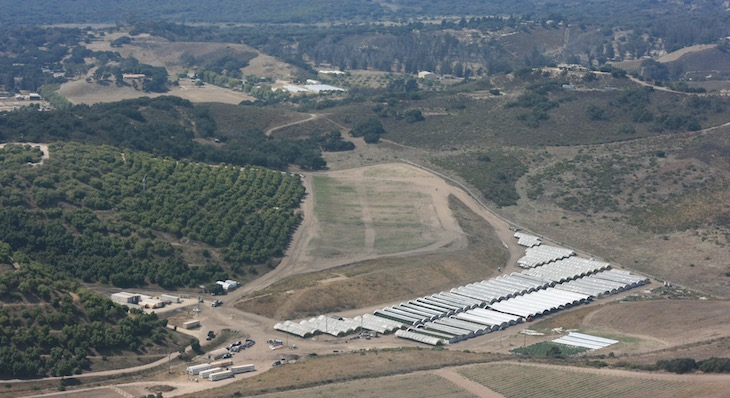 County Permit Stalls for Herbal Angels Cannabis Farm Near Lompoc