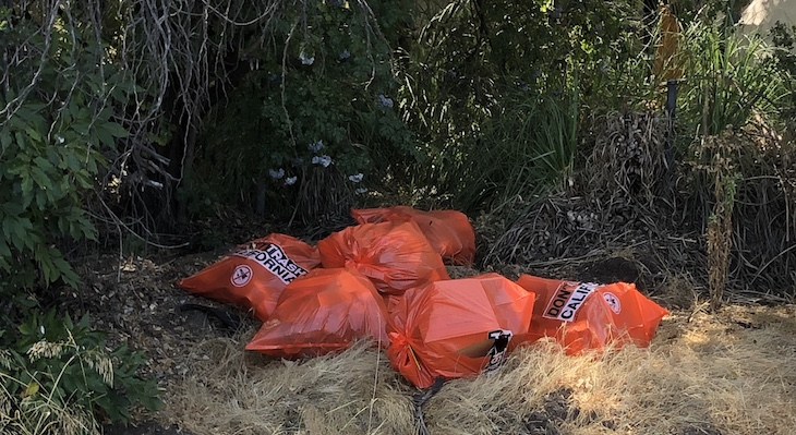 Orange Caltrans trash bags distributed to encampment residents for assistance with clean-up effort