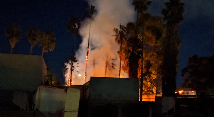 Tree Fire Gets Close to Building on Milpas title=