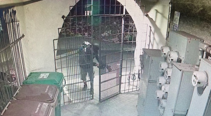 Bicycle Thieves Caught on Camera