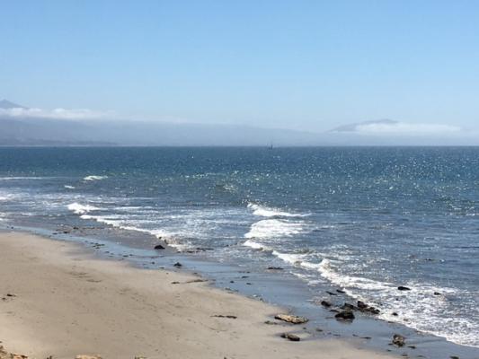 Fog Bank Along Shoreline