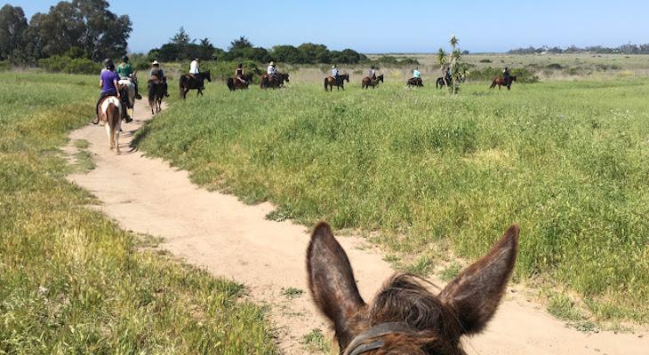 More Mesa Trail Ride title=